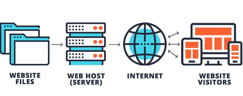 регистрация домена в сети