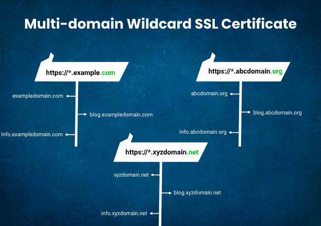 Multi-domain Wildcard SSL Certificate